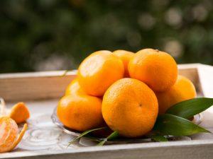 Употребление мандаринов при болезнях поджелудочной