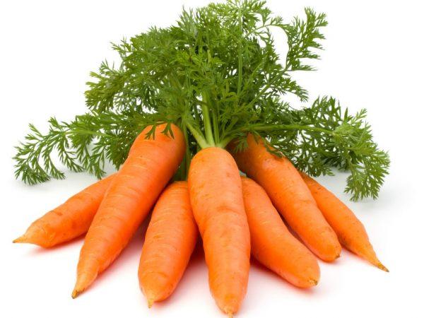 Сроки посадки моркови в апреле 2019