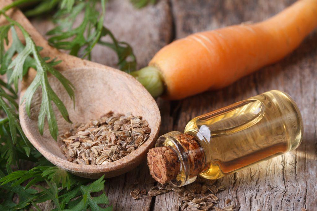 Масло морковное (эфирное масло семян моркови) применение и свойства