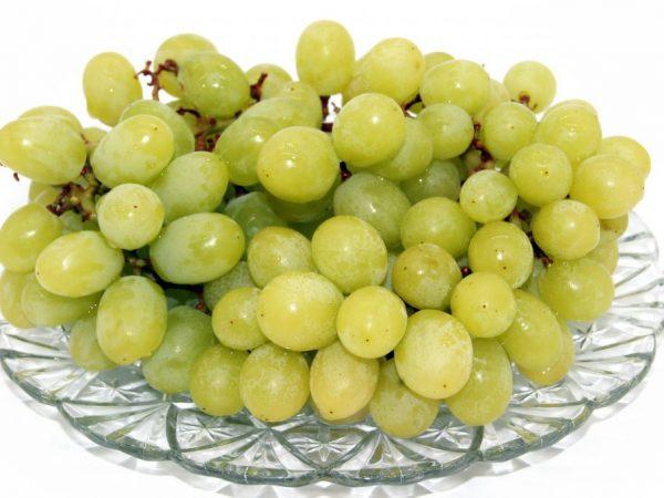 Характеристика винограда Белое Чудо