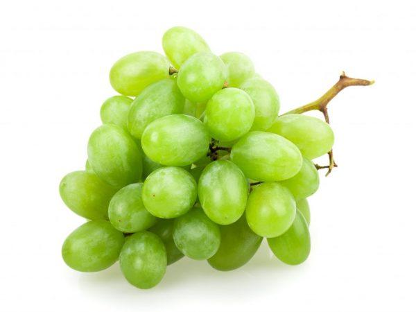 Описание винограда Долгожданный