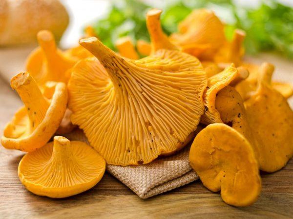 Перед заморозкой грибы нужно отварить