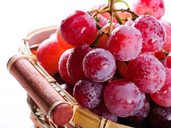Красный виноград и его особенности