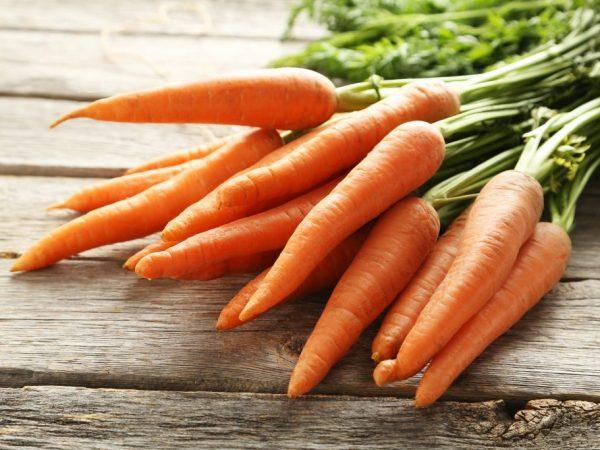 Нужно ли обрезать ботву моркови