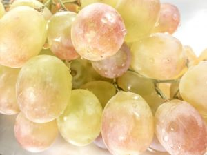 Сорт винограда Русский ранний