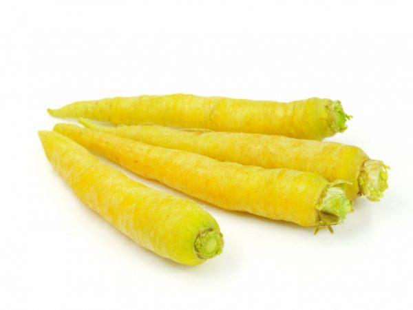 Морковь противопоказана при болезнях ЖКТ