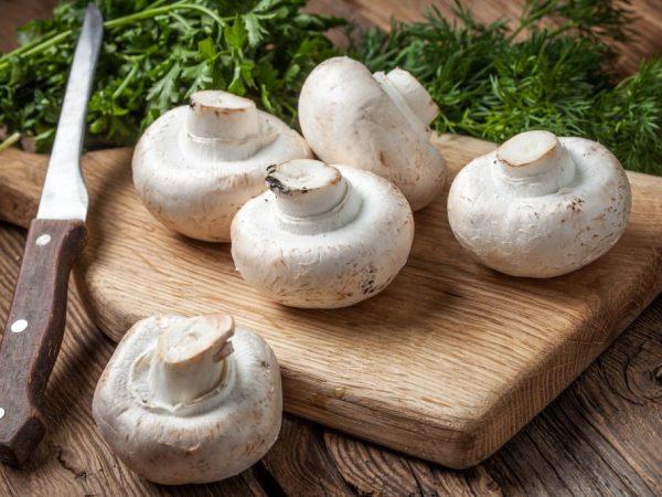 Перед готовкой все грибы нужно хорошо помыть и почистить