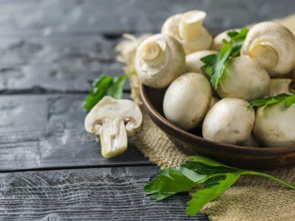 Количество витаминов зависит от вида грибов