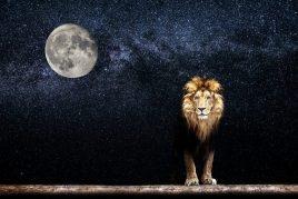 Значение луны во Льве