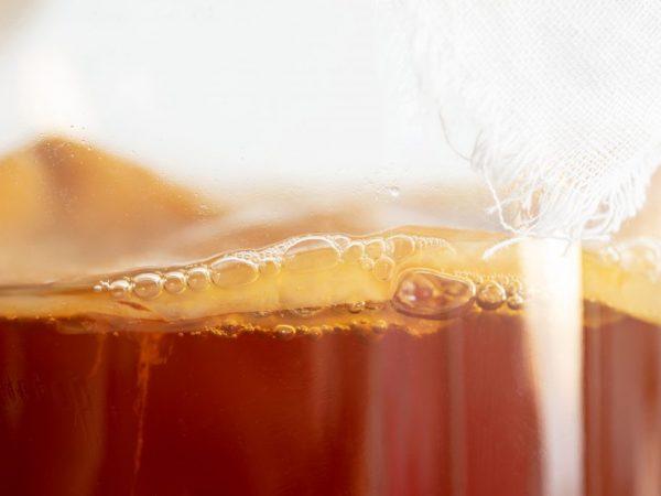 чайный гриб закисляет или ощелачивает организм