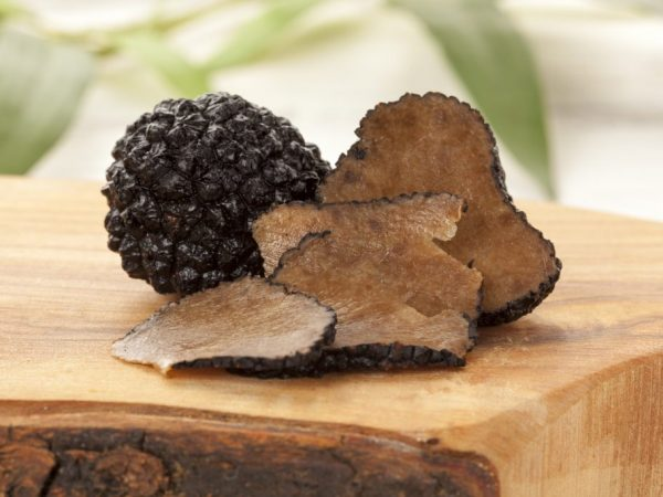 Стоимость грибов зависит от сорта