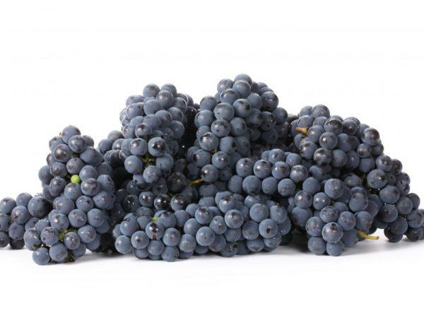 Калорийность черного винограда