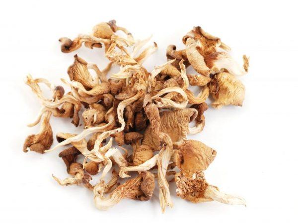 Сушеные грибы важно правильно приготовить