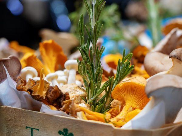 Какова калорийность грибов