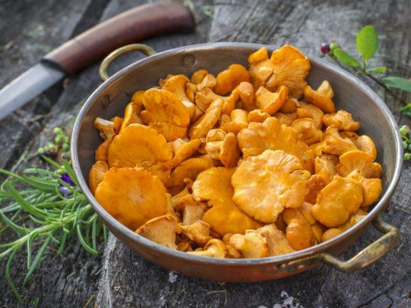На калорийность грибов влияет способ обработки
