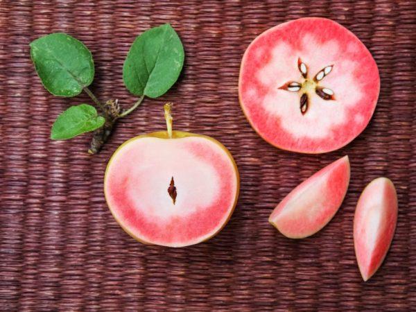 Мясистые яблочки