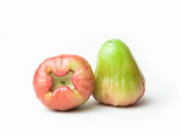 Яблоки созревают только на солнце