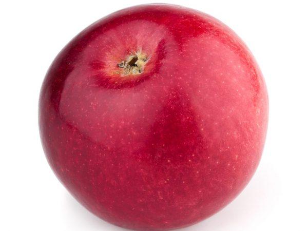 Описание сорта яблони Дарунок