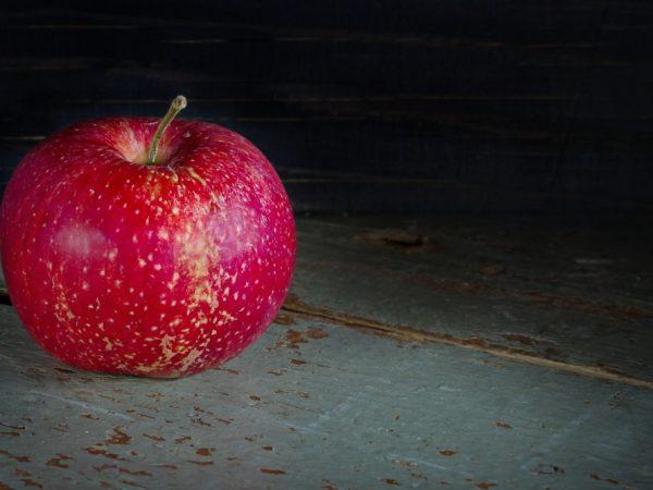 Яблоки вырастают в любых регионах