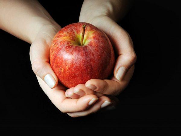 Подкормка просто необходима для получения плодов