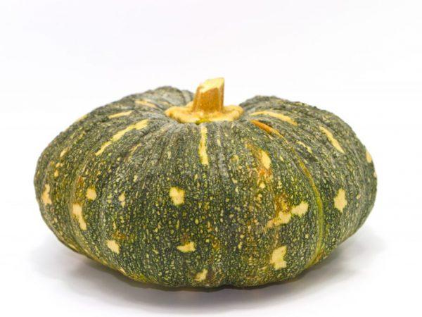 Сухой хвостик указывает на степень спелости плода