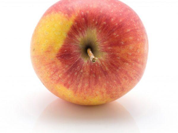 Хороший урожай при правильном уходе за яблоней