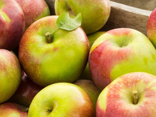 Вкусный сочные яблоки