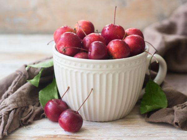 Яблони растут без определенного ухода