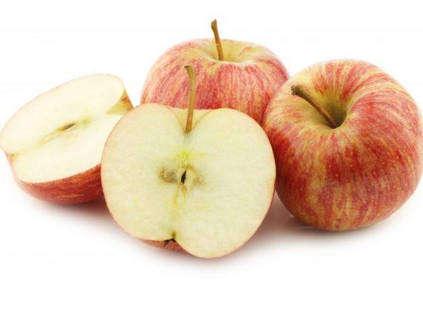 Причины потемнения яблок на срезе