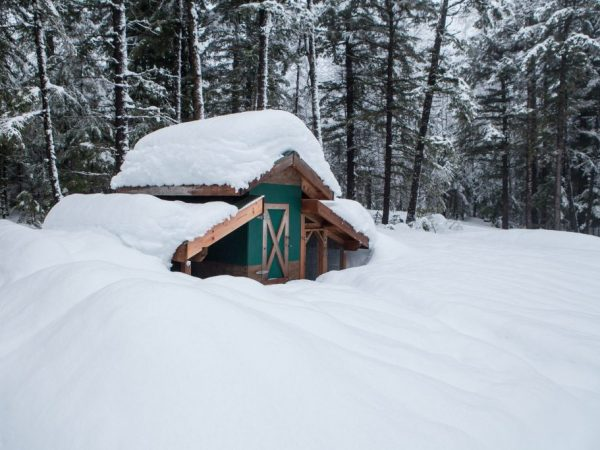 Как построить теплый курятник на зиму