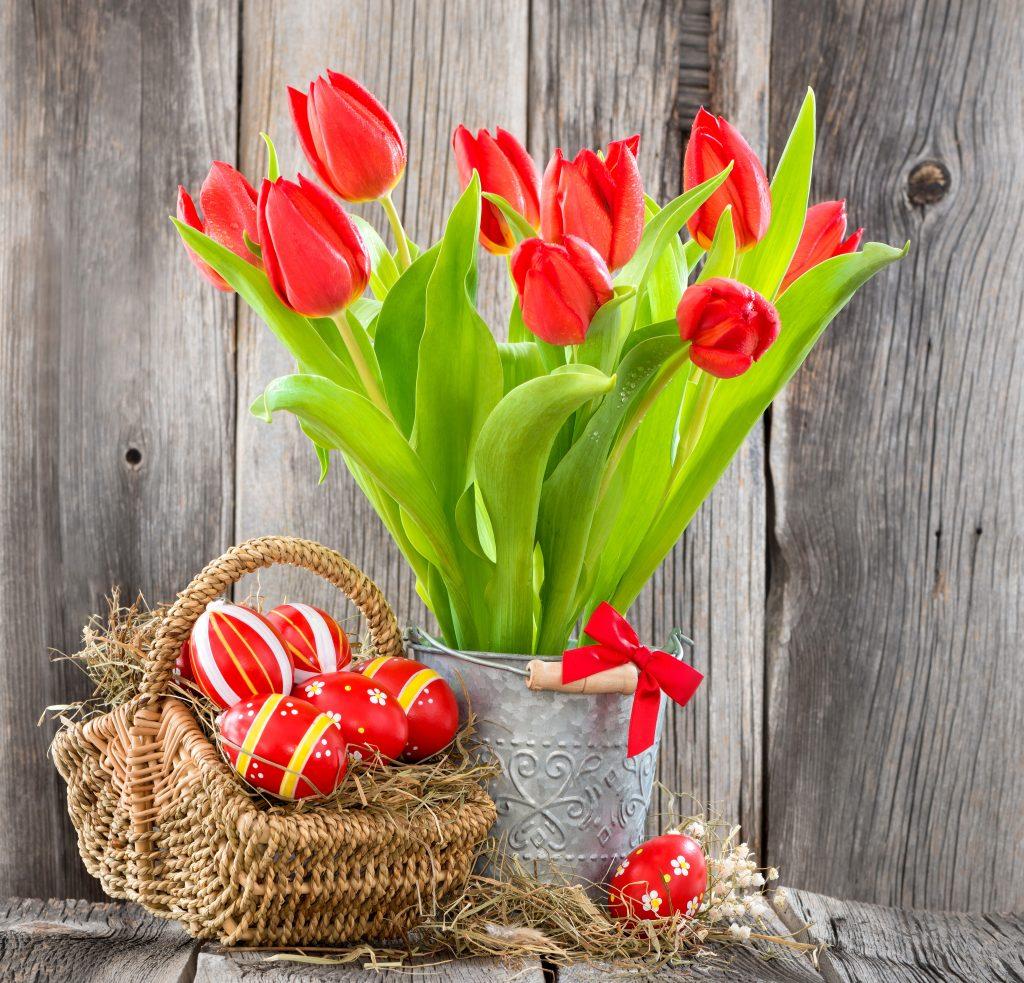 Как хранить тюльпаны